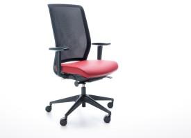 siège ergonomique bureau